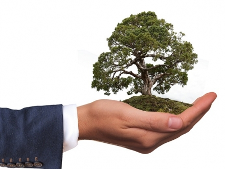 Socially Responsible Investment  - Do you want to go green?
